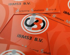 IBMS3